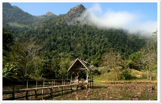 老挝乡村风景图片