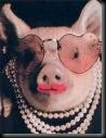 rosey pig